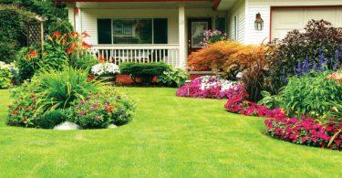 Tips For Landscape Needs