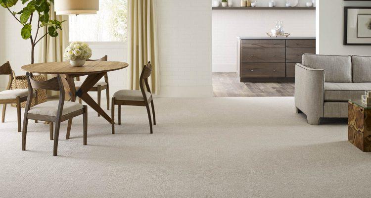 modern carpeting ideas