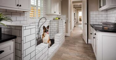 5 Tips to Keep a Pet-Friendly Home Clean and Odor Free